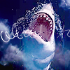 sharkbytes userpic