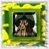 Rum Inspector: davy jones
