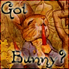 Got Bunny?