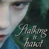 Twilight - Stalking Is Hawt