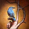 marchskies: bluebird