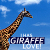 Misc Animals GIRAFFE LOVE BITCHES