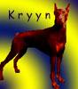 kryyn userpic