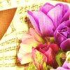 syuan: flowers