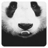 lunnaya_devo4ka userpic