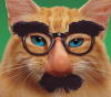 Matthew B. Tepper: Ginger cat groucho glasses mustache