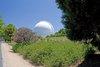 palomar observatory - alan
