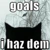 goals I haz dem