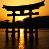 Cynamonka: Z zachodem słońca