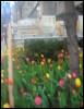 ayo_airpunch userpic