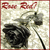 MASHFanficChick: Rose Red? (Black Rose)