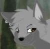 rizugraywolf userpic