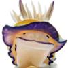 Sea Slug Pimp
