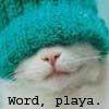 word playa