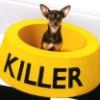 killer_kolbaser userpic