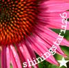 shiningstar1126 userpic