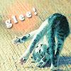 Willow: {Random} - kitten glee