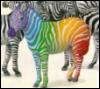 Odd Zebra