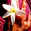 lifeforadream userpic