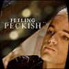 Rebcake: btvs_spi_peckish