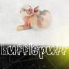 twinkiehouseelf userpic