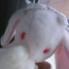 yuki_mana userpic