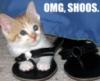 Cat-Shoos