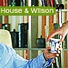House e Wilson - BRASIL