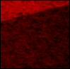 biomix userpic