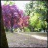 maryluna userpic