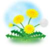 hirashin userpic