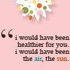 the air & sun