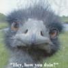 emu face