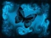 butterfly0girl userpic