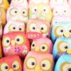 Owls - who?