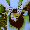 desshou userpic