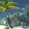 mehugtrees userpic