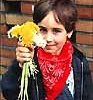 Dandelion Bouquet!