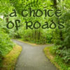 imhilien: H/S - A Choice of Roads