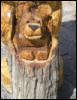 stumptownbear userpic