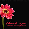 thank you by eyesthatslay