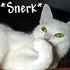 snerk