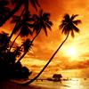 serenidad: paradise