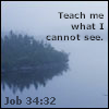 What I cannot see