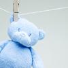 MISC blue teddy