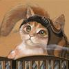 Котичка пилот
