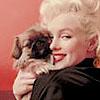 Marilyn by me