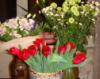 olga_doroff: Цветы
