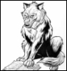 Reading wolf
