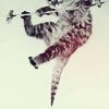 muzicphreak userpic
